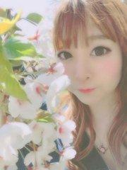 【ブログまとめ】今が見ごろ!春を感じるブログまとめ🌸